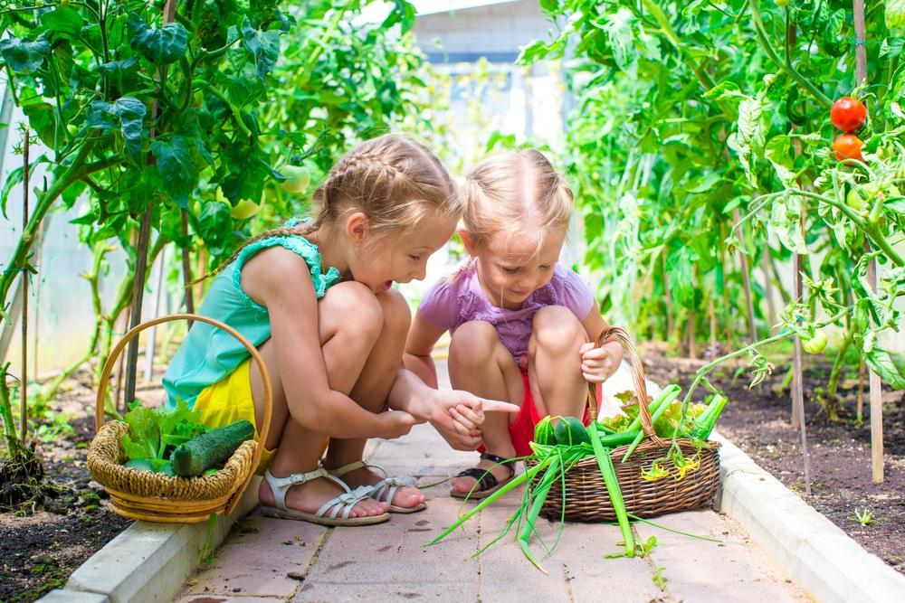 girls-garden-summer